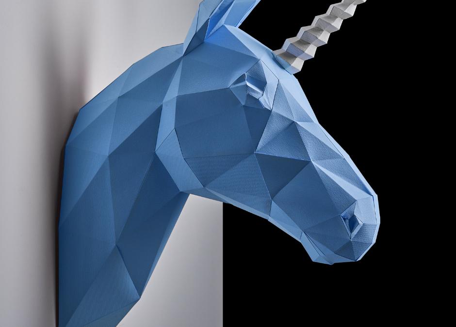 Meet the Unicorns